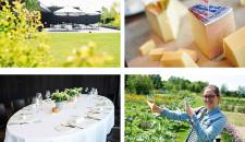 Event: Kaas uit Zwitserland bij Hertog Jan